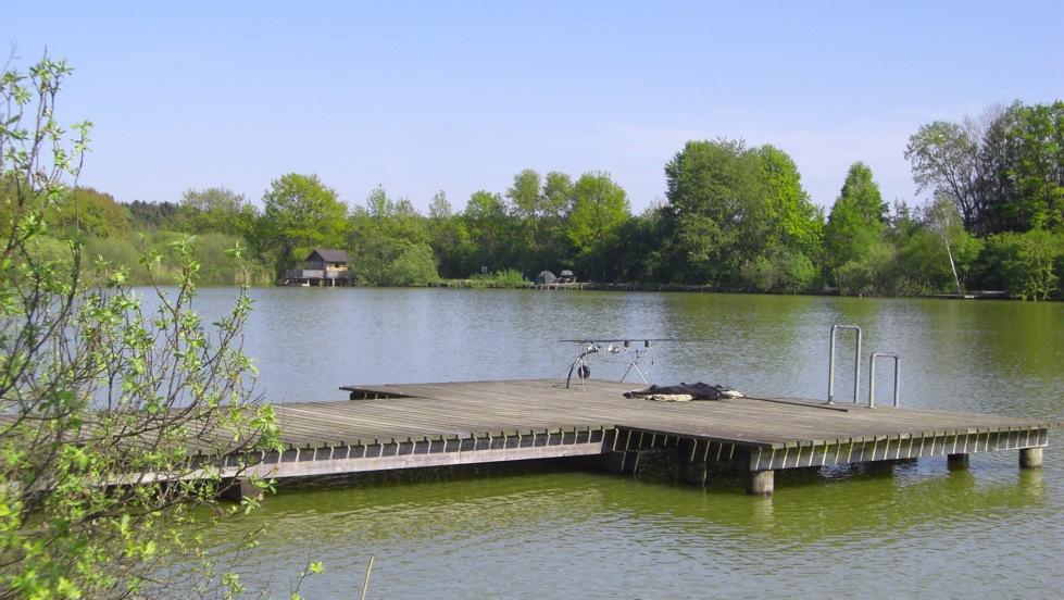 Exkursion seniorenbund ortsgruppe neusiedl bei g ssing for Teich mit fischen